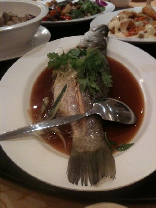 yup that's a fish